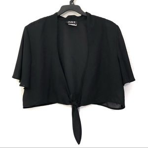 Vintage Plus-Size Sheer Tie Front Crop Top